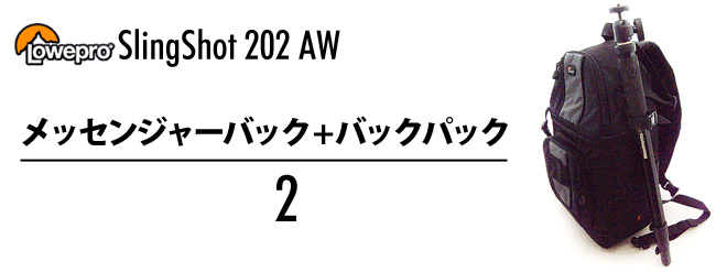  202AW [] 